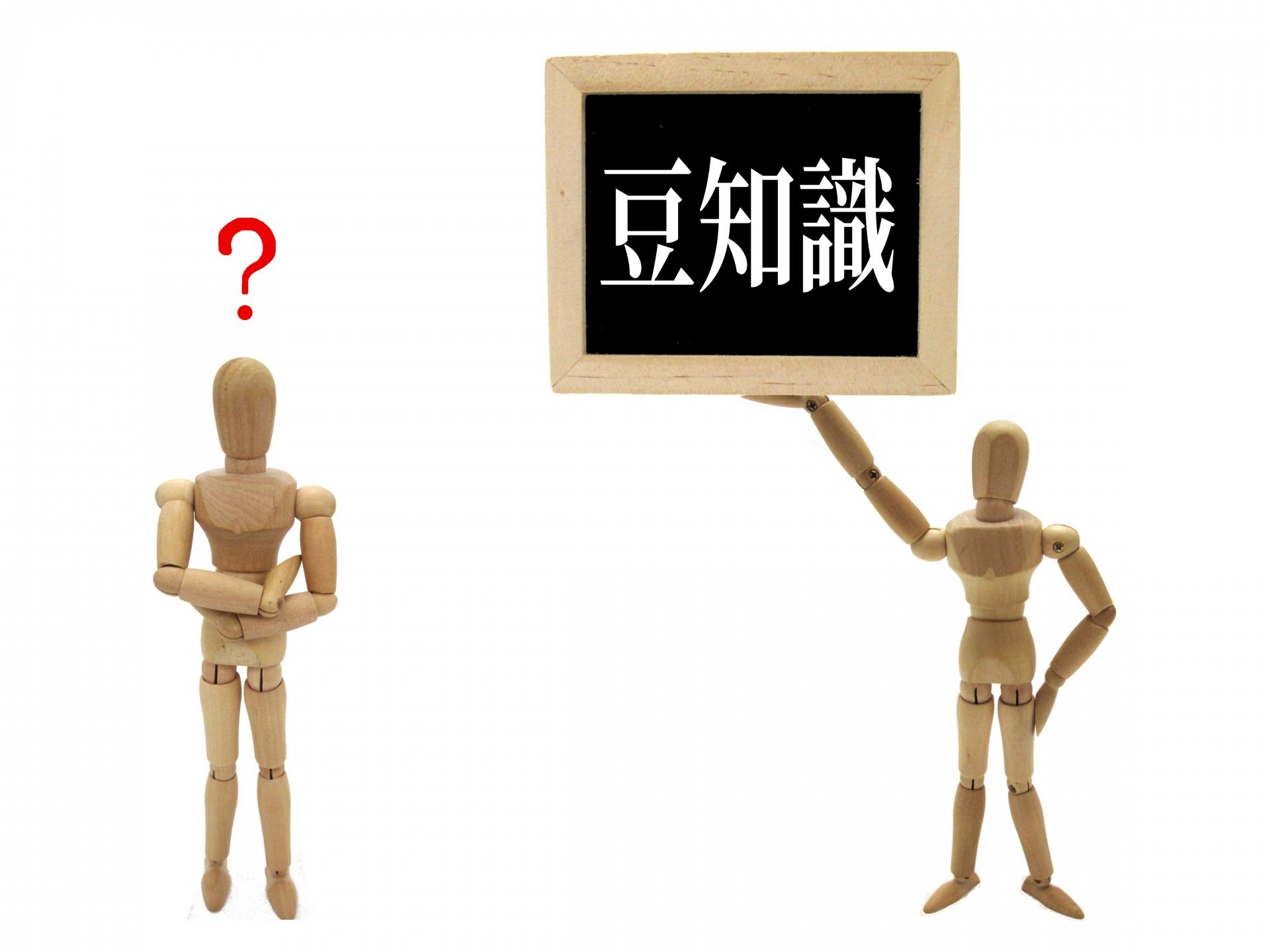 ニュースレターに掲載するコンテンツについて。「雑学」は必要?ネタ切れになったらどうする?